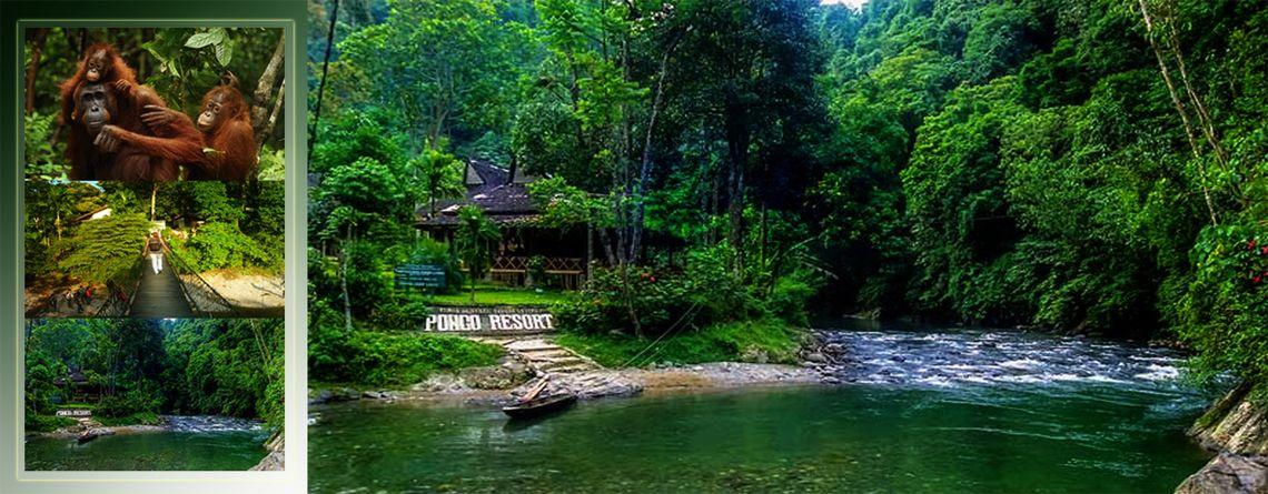 objek wisata bukit lawang